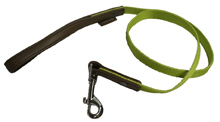 GREEN DOG LEASH